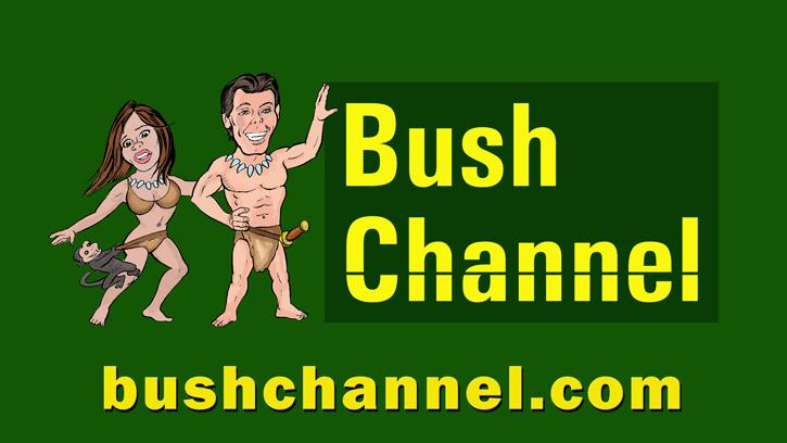 Bush Channel